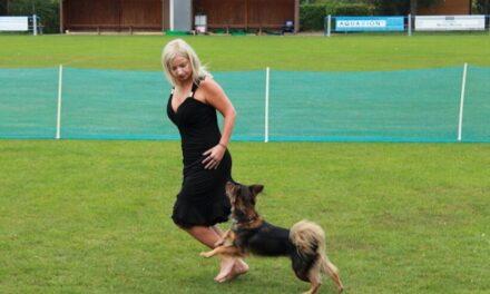Már elérhető a Városi Kutyák Iskolája dog dance csoportja