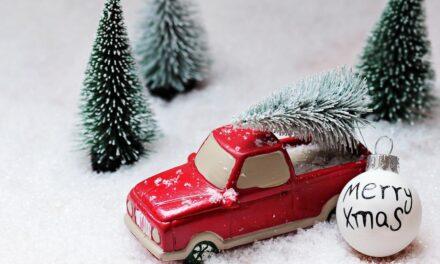 Érkeznek Budafok-Tétény karácsonyfái