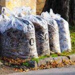 Jövő héttől a háztartási szeméttel együtt viszik el a zöldhulladékot
