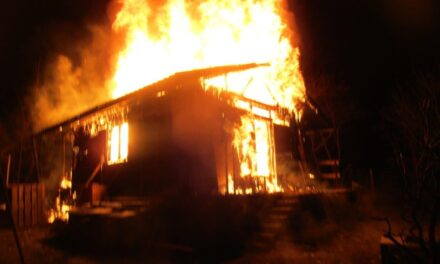 Leégett egy faház a Diósdi utcában