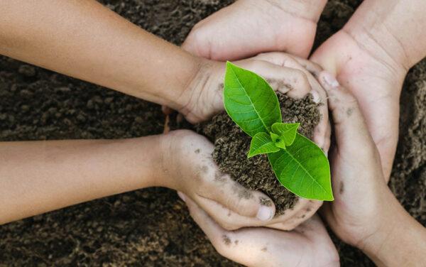 Bölcsőde a környezettudatosság jegyében – Videóval frissítve!