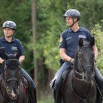 Lovas rendőrök a kerületben